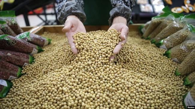 Bất ngờ miễn thuế 10 triệu tấn đậu nành nhập từ Mỹ, chính quyền Tập Cận Bình đang thỏa hiệp? - Ảnh 1.