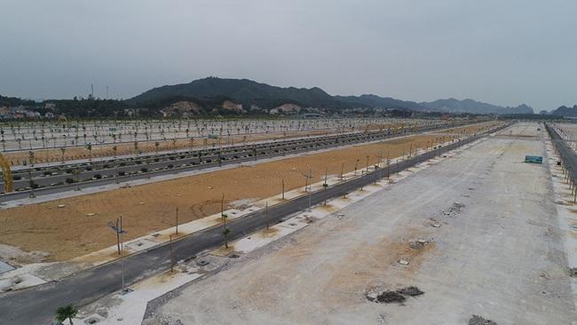 Khu đô thị Phương Đông Vân Đồn phải trồng keo phủ đất vì vắng dân - Ảnh 3.
