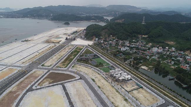 Khu đô thị Phương Đông Vân Đồn phải trồng keo phủ đất vì vắng dân - Ảnh 5.