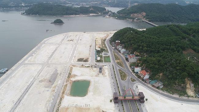 Khu đô thị Phương Đông Vân Đồn phải trồng keo phủ đất vì vắng dân - Ảnh 7.