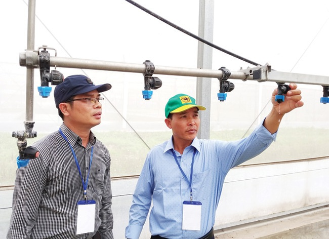 """Cùng nông dân khám phá """"đại bản doanh"""" trồng rau công nghệ cao - Ảnh 4."""