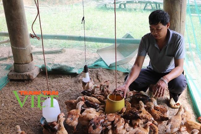 Nông thôn mới Dương Quỳ: Đích đến không còn xa - Ảnh 3.