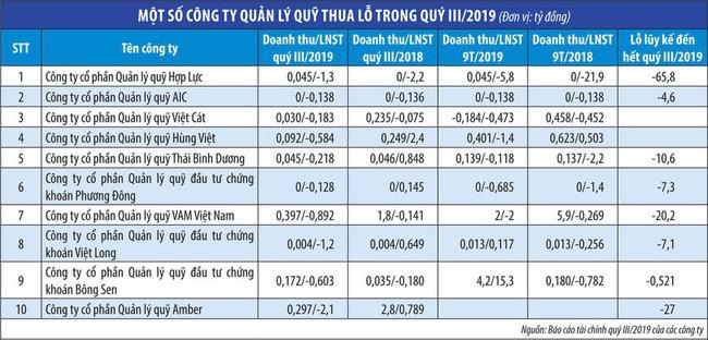 VN-Index tăng, nhiều công ty quản lý quỹ vẫn lỗ - Ảnh 2.