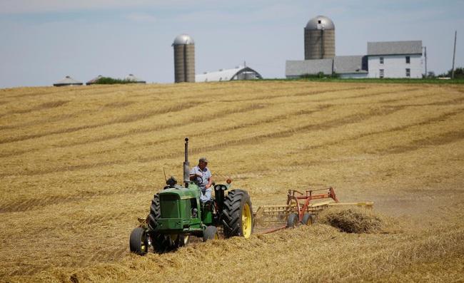 """Nông dân Mỹ """"ngạc nhiên"""" nếu Bắc Kinh tuân thủ cam kết mua 50 tỷ USD nông sản - Ảnh 1."""