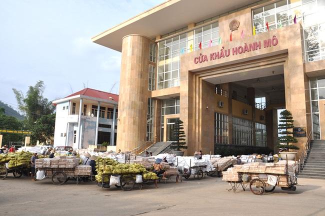 Tạm dừng hoạt động xuất nhập khẩu tại 4 điểm xuất hàng qua biên giới tỉnh Quảng Ninh - Ảnh 2.