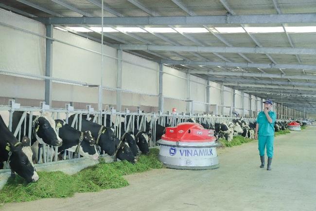 Từ vụ tin đồn về nguồn nguyên liệu sữa của Vinamilk: Phải có chế tài xử lý nghiêm - Ảnh 2.