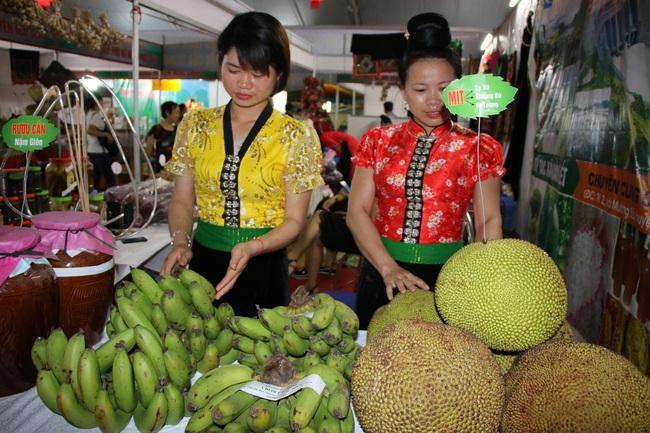 Hiệu quả từ phong trào nông dân thi đua sản xuất, kinh doanh giỏi ở Sơn La - Ảnh 1.