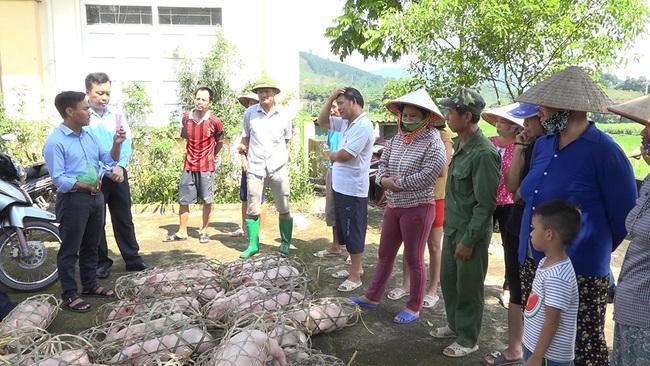 Những kết quả tiêu biểu sau 10 năm xây dựng NTM của tỉnh Quảng Ninh  - Ảnh 4.