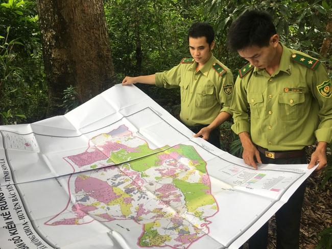Hiệu quả công tác quản lý, bảo vệ rừng ở Sơn La - Ảnh 4.