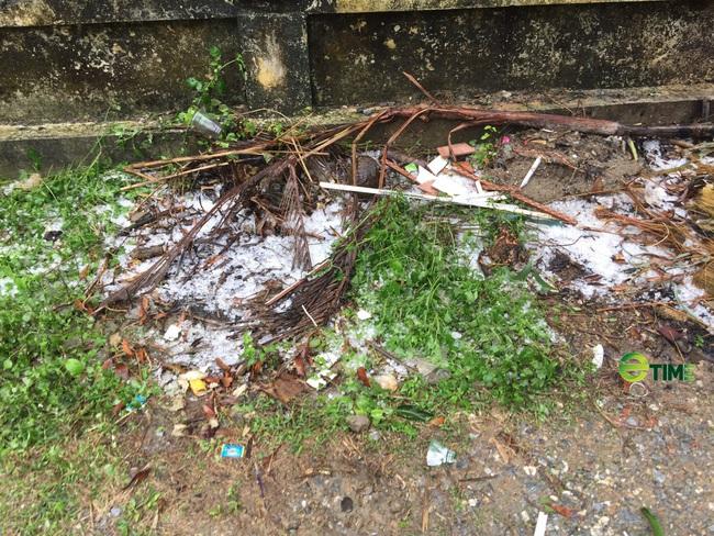 Nông nghiệp miền Bắc bị ảnh hưởng nặng nề vì mưa đá  - Ảnh 2.