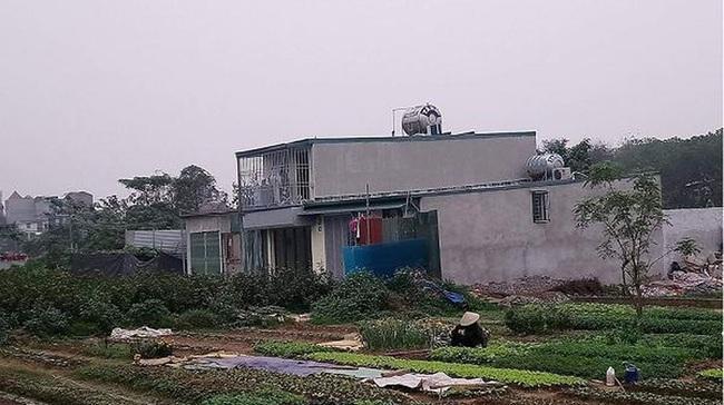 Hà Nội tập trung xử lý vi phạm lấn chiếm đất nông nghiệp, đất công - Ảnh 1.