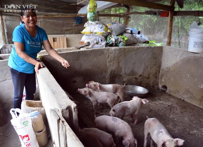 Kiên Giang: Nữ chi hội trưởng đảm việc nước giỏi việc nhà, mỗi năm kiếm trên trăm triệu - Ảnh 2.