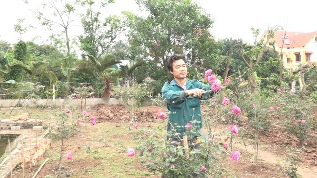 Hưng Yên: Trồng hồng cổ Sa Pa, nuôi con đặc sản dưới ao, lão nông thu nhập tiền tỷ - Ảnh 5.