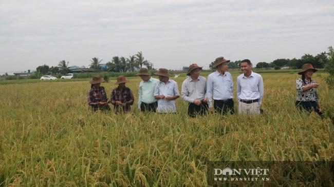 """Quảng Ninh: Nhân rộng mô hình """"nông dân dạy nông dân"""" theo phương thức """"cầm tay chỉ việc""""  - Ảnh 1."""