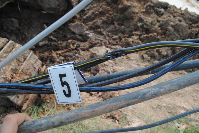Nam công nhân thi công ở công trình Vinhomes Grand Park bị khởi tố vì vô ý làm chết người - Ảnh 2.