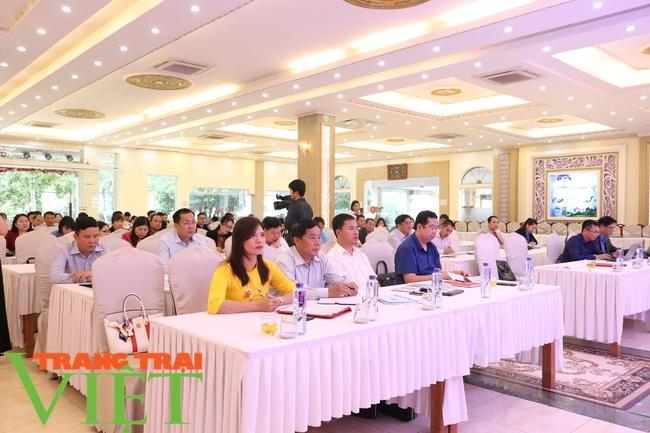 Sơn La triển khai Chương trình OCOP năm 2020 - Ảnh 2.