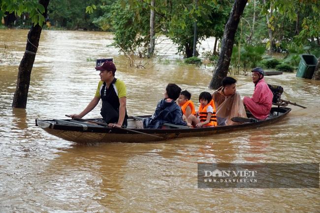 Người Huế tiếp tục lội bì bõm, bơi thuyền trong phố vì mưa ngập nặng nề - Ảnh 4.