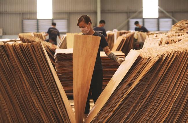 Kiểm soát gian lận thương mại: Vấn đề sống còn của ngành gỗ - Ảnh 1.