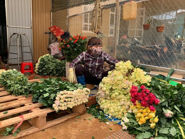 Sát ngày Phụ nữ Việt Nam, giá hoa hồng tại Đà Lạt hơn 10 ngàn đồng/bông - Ảnh 1.