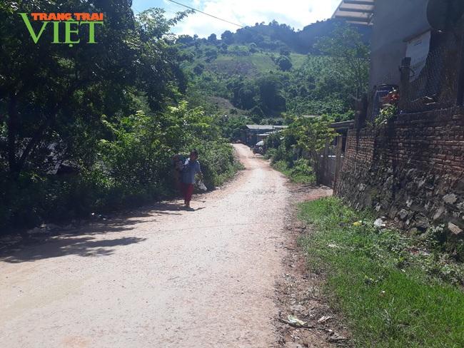 Tú Nang nỗ lực bảo vệ môi trường trong xây dựng nông thôn mới - Ảnh 1.