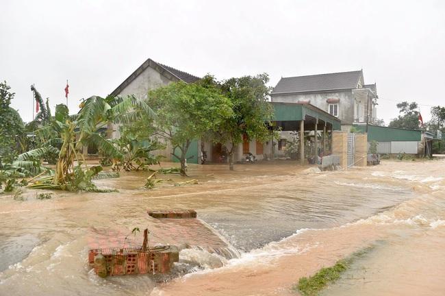 Phó Thủ tướng Trịnh Đình Dũng: Bảo đảm an toàn tuyệt đối cho Hồ Kẻ Gỗ - Ảnh 5.