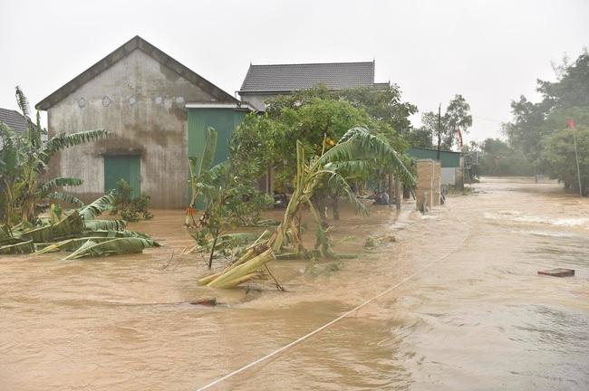 Phó Thủ tướng Trịnh Đình Dũng: Bảo đảm an toàn tuyệt đối cho Hồ Kẻ Gỗ - Ảnh 4.