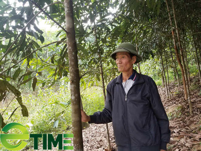 Lạng Sơn: Thí điểm mô hình liên kết DN - HTX - ND trong tiêu thụ và cung ứng vật tư nông nghiệp - Ảnh 1.
