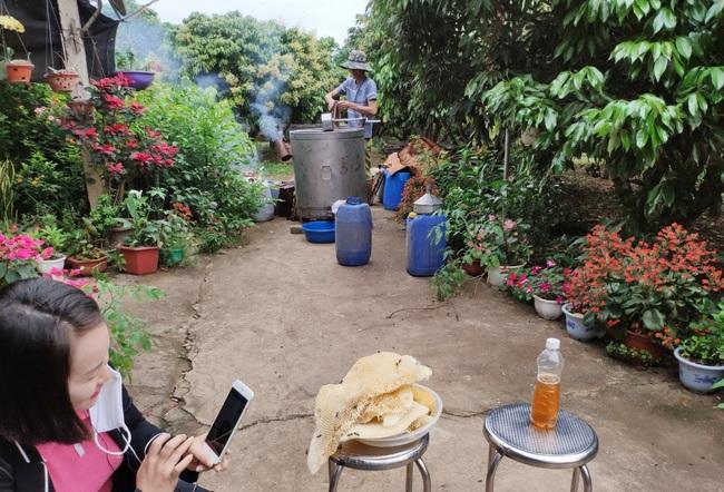 Bắc Giang: Đến Lục Ngạn, du khách thích thú đi xe trâu thăm quan trải nghiệm vườn cam, bưởi tiền tỷ, quả sai trĩu cành - Ảnh 5.
