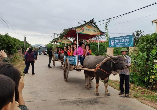 Bắc Giang: Đến Lục Ngạn, du khách thích thú đi xe trâu thăm quan trải nghiệm vườn cam, bưởi tiền tỷ, quả sai trĩu cành - Ảnh 2.