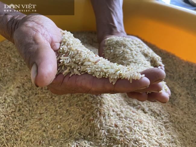 """Quy trình sản xuất """"gạo lạ"""" ngon sạch có giá đắt gấp 3 lần gạo thường - Ảnh 17."""