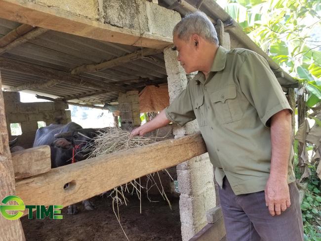 Lạng Sơn: Chuyển giao tiến bộ KHKT, hỗ trợ nông dân chăn nuôi, trồng trọt - Ảnh 1.