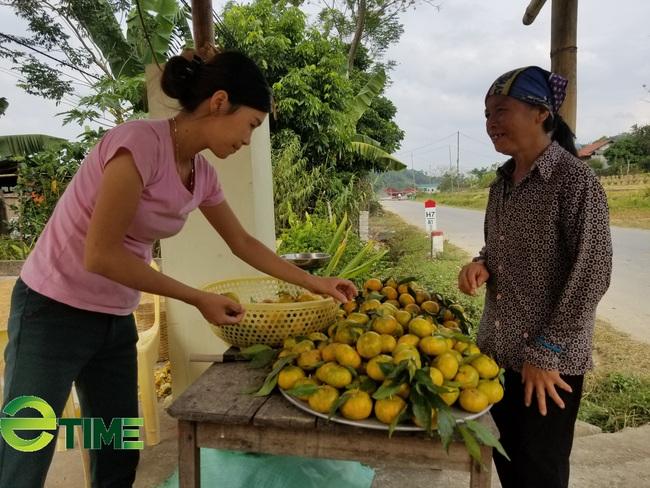 Lạng Sơn: Chuyển giao tiến bộ KHKT, hỗ trợ nông dân chăn nuôi, trồng trọt - Ảnh 2.