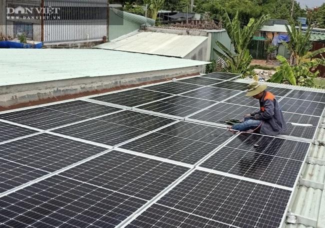 Đây là cách người Đồng Nai đang làm để vừa có điện sử dụng lại dễ dàng kiếm tiền triệu mỗi tháng - Ảnh 3.