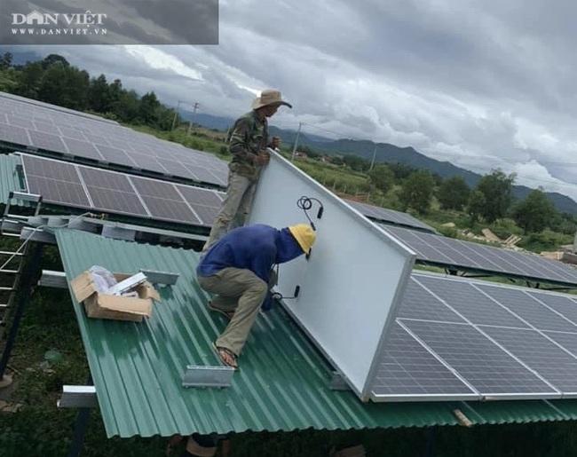 Đây là cách người Đồng Nai đang làm để vừa có điện sử dụng lại dễ dàng kiếm tiền triệu mỗi tháng - Ảnh 2.