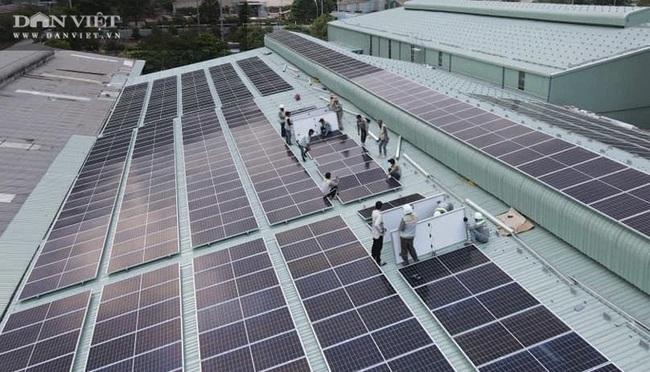 Đây là cách người Đồng Nai đang làm để vừa có điện sử dụng lại dễ dàng kiếm tiền triệu mỗi tháng - Ảnh 1.