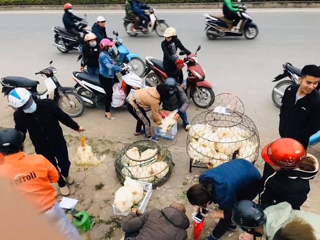 Giá gia cầm hôm nay 27/10: Giá gà thịt công nghiệp nhích lên, người nuôi chưa thoát thua lỗ - Ảnh 1.