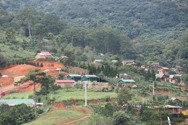 Vụ 54 căn nhà trái phép trên đất lâm nghiệp: Lâm Đồng chỉ đạo khẩn - Ảnh 1.