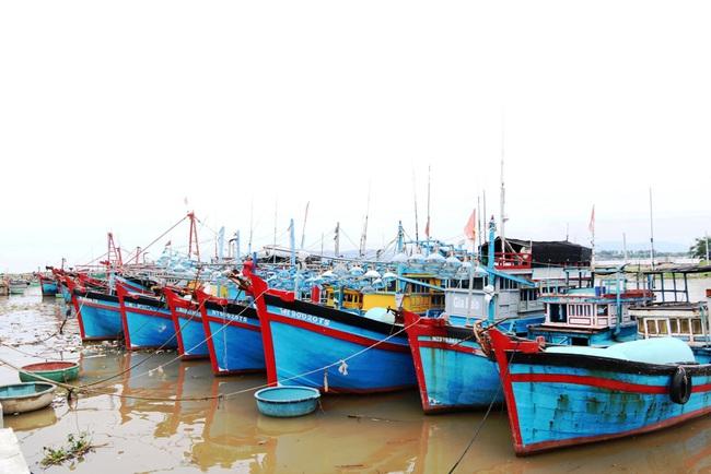 Phòng chống bão số 9: Ninh Thuận cấm tàu thuyền ra biển từ 14 giờ chiều 27/10 - Ảnh 1.