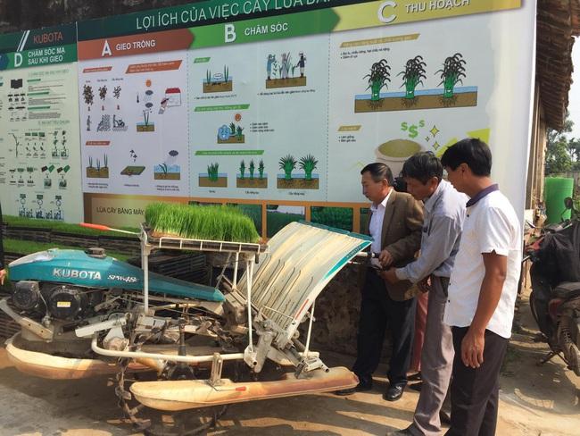 Nỗ lực đưa máy cấy vào trồng lúa - Ảnh 1.