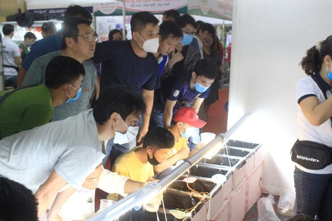 Gạo ST, nước mắm truyền thống, cá cảnh… hút người Sài Gòn tại hội chợ nông, lâm, thủy sản - Ảnh 4.