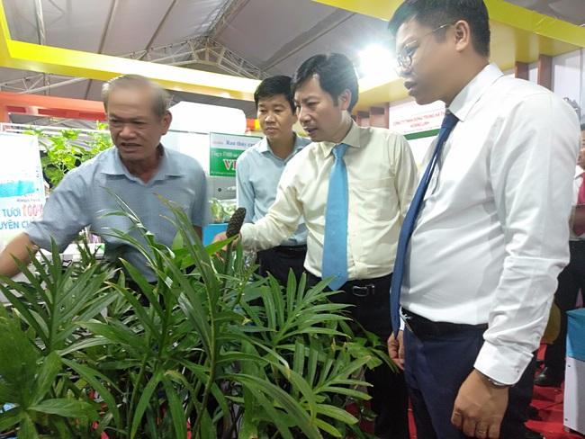 Lạ: Một loại rau dại được tôn vinh sản phẩm nông nghiệp tiêu biểu của TP.HCM - Ảnh 2.