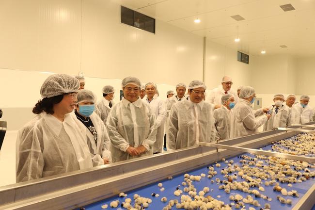 Diễn đàn nông dân quốc gia lần thứ V: Sản xuất theo chuỗi mới ứng dụng tối đa KHCN - Ảnh 4.