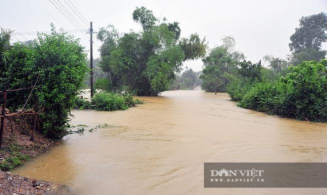 Hà Tĩnh: Nước sông Ngàn Sâu dâng cao, 5 xã ở Hương Khê bị cô lập - Ảnh 2.