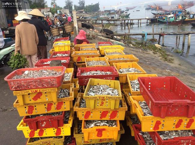 """Quảng Nam: """"Con đẻ"""" của làng nghề nước mắm truyền thống Cửa Khe đổi đời nhờ lưu giữ vị ngọt của biển - Ảnh 5."""