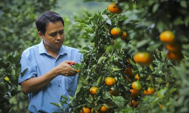 Nông nghiệp - trụ đỡ qua gian khó (bài cuối): Xây dựng nền nông nghiệp hội nhập - Ảnh 1.