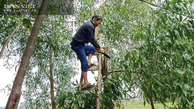 Hà Tĩnh: Di dời dân, chằng chéo nhà cửa trước cơn bão số 13 - Ảnh 5.