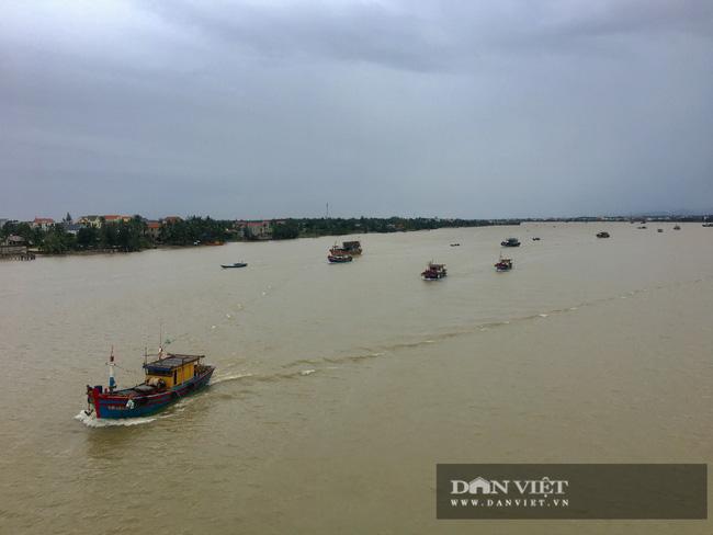 Hậu quả bão số 13 ở Quảng Bình: 8 người bị thương nặng, trường học, trạm y tế tốc mái  - Ảnh 7.