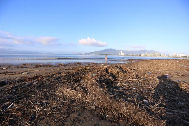 """ẢNH: Bãi biển """"đẹp nhất hành tinh"""" ngập ngụa trong rác sau bão số 13 - Ảnh 6."""
