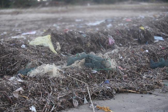 """ẢNH: Bãi biển """"đẹp nhất hành tinh"""" ngập ngụa trong rác sau bão số 13 - Ảnh 7."""