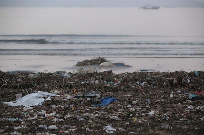 """ẢNH: Bãi biển """"đẹp nhất hành tinh"""" ngập ngụa trong rác sau bão số 13 - Ảnh 5."""